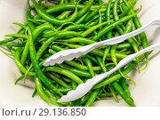 Купить «Зеленый перец на блюде», фото № 29136850, снято 30 августа 2018 г. (c) Beerkoff / Фотобанк Лори