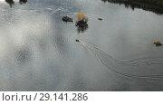 Купить «Быстроходный катер идет по реке», видеоролик № 29141286, снято 20 октября 2018 г. (c) Евгений Ткачёв / Фотобанк Лори