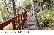 Купить «Прогулка по деревянной лестнице с перилами в лесу», видеоролик № 29141354, снято 20 октября 2018 г. (c) Евгений Ткачёв / Фотобанк Лори