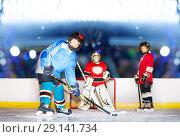Купить «Young defenseman passing puck during hockey match», фото № 29141734, снято 1 декабря 2017 г. (c) Сергей Новиков / Фотобанк Лори