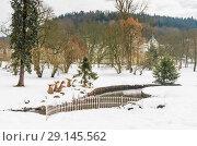 Winter in central park - Marianske Lazne (Marienbad) - great famous Bohemian spa town in the west part of the Czech Republic (region Karlovy Vary) (2018 год). Стоковое фото, фотограф Николай Коржов / Фотобанк Лори