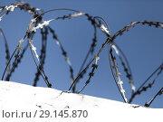 Купить «Barbed wire on top of white wall», фото № 29145870, снято 11 апреля 2018 г. (c) EugeneSergeev / Фотобанк Лори