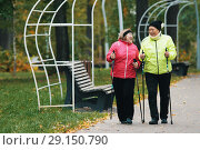 Mature women are engaged in Scandinavian walking in autumn in the park next to the bench. Стоковое фото, фотограф Константин Шишкин / Фотобанк Лори