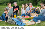 Купить «People of different ages sitting and talking on picnic», фото № 29151002, снято 14 мая 2017 г. (c) Яков Филимонов / Фотобанк Лори