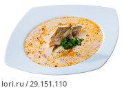 Купить «Codfish soup with vegetables», фото № 29151110, снято 1 июня 2020 г. (c) Яков Филимонов / Фотобанк Лори