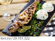 Купить «Baked trout with wine and garnish of rice», фото № 29151322, снято 19 ноября 2018 г. (c) Яков Филимонов / Фотобанк Лори