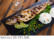 Купить «Baked trout with rice», фото № 29151326, снято 22 октября 2018 г. (c) Яков Филимонов / Фотобанк Лори