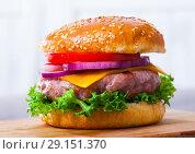 Купить «Tasty grilled hamburger with pork patty, tomato, cheese and lettuce», фото № 29151370, снято 20 апреля 2019 г. (c) Яков Филимонов / Фотобанк Лори