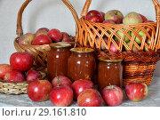 Купить «apple jam and fresh apples in a wicker basket», фото № 29161810, снято 25 августа 2018 г. (c) Володина Ольга / Фотобанк Лори