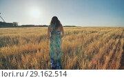 Купить «A pregnant young woman is walking on a wheat field at sunset. Video in motion.», видеоролик № 29162514, снято 4 сентября 2018 г. (c) Mikhail Davidovich / Фотобанк Лори