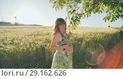 Купить «A pregnant young woman stands next to a wheat field at sunset near the hanging branches of trees. Video in motion.», видеоролик № 29162626, снято 4 сентября 2018 г. (c) Mikhail Davidovich / Фотобанк Лори