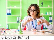 Купить «Woman dentist working on teeth implant», фото № 29167454, снято 11 июня 2018 г. (c) Elnur / Фотобанк Лори