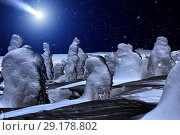 Купить «Comet over night winter forest. Night sky with stars. Winter night landscape. Spruce forest in winder», фото № 29178802, снято 14 марта 2015 г. (c) Евгений Ткачёв / Фотобанк Лори