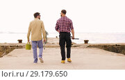 Купить «friends with fishing rods walking along pier», видеоролик № 29179650, снято 28 сентября 2018 г. (c) Syda Productions / Фотобанк Лори