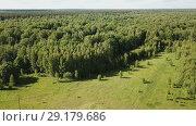 Купить «Aerial view of picturesque forest landscape in central Russia on summer day», видеоролик № 29179686, снято 28 июня 2018 г. (c) Яков Филимонов / Фотобанк Лори