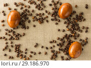 Купить «Coffee beans and Easter eggs, dyed with coffee on a background of burlap. Place for inscription», фото № 29186970, снято 17 ноября 2018 г. (c) Владимир Пойлов / Фотобанк Лори
