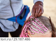 Купить «Head of little girl with woman mades thin plaits in African style, braiding process», фото № 29187486, снято 19 июля 2018 г. (c) Кекяляйнен Андрей / Фотобанк Лори