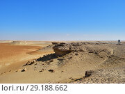 Safari in Sahara desert, Egypt (2008 год). Стоковое фото, фотограф Знаменский Олег / Фотобанк Лори