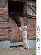 Купить «Little Girl feeds the horses», фото № 29189234, снято 22 апреля 2018 г. (c) Типляшина Евгения / Фотобанк Лори