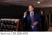 Купить «Wine producer inspecting quality of red wine in winery vault», фото № 29206410, снято 22 января 2018 г. (c) Яков Филимонов / Фотобанк Лори