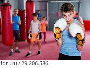 Купить «Portrait of boy boxer wearing gloves at boxing hall», фото № 29206586, снято 12 апреля 2017 г. (c) Яков Филимонов / Фотобанк Лори