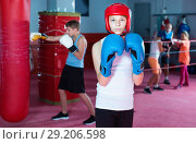 Купить «Portrait of boy boxer wearing gloves at boxing hall», фото № 29206598, снято 12 апреля 2017 г. (c) Яков Филимонов / Фотобанк Лори