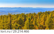 Купить «Ural Taiga against the backdrop of distant mountain peaks.», фото № 29214466, снято 6 сентября 2017 г. (c) Акиньшин Владимир / Фотобанк Лори