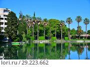 Купить «Pond in Seaside Park in New Athos, Abkhazia», фото № 29223662, снято 3 июня 2018 г. (c) Володина Ольга / Фотобанк Лори