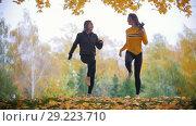 Купить «Girls warming up before training in park. Running on the spot», видеоролик № 29223710, снято 10 декабря 2018 г. (c) Константин Шишкин / Фотобанк Лори