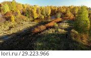 Купить «Nizhny Kamensky pond in autumn in Moscow. Russia», видеоролик № 29223966, снято 12 декабря 2019 г. (c) Володина Ольга / Фотобанк Лори