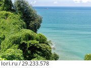 Купить «Panoramic view of the coast of the tropical island», фото № 29233578, снято 12 июля 2013 г. (c) Евгений Ткачёв / Фотобанк Лори