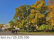 Купить «Golden autumn in Alexander Gardens. Москва», фото № 29235106, снято 15 октября 2018 г. (c) Валерия Попова / Фотобанк Лори