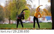 Купить «Girls warming up outside before training in park. Tilt to the right», фото № 29238650, снято 23 октября 2018 г. (c) Константин Шишкин / Фотобанк Лори
