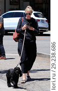 Купить «Jane Lynch goes out for ice cream at McConnell's with her dog Rumi and a friend Featuring: Jane Lynch Where: Beverly Hills, California, United States When: 13 Jul 2018 Credit: WENN.com», фото № 29238686, снято 13 июля 2018 г. (c) age Fotostock / Фотобанк Лори