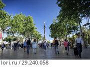 Купить «Famous las ramblas pedestrian avenue and colon columbus monument landmark in downtown barcelona city spain.», фото № 29240058, снято 24 апреля 2017 г. (c) age Fotostock / Фотобанк Лори