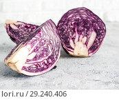 Купить «red cabbage on gray, copy space», фото № 29240406, снято 12 марта 2018 г. (c) Ольга Сергеева / Фотобанк Лори