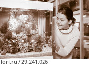 Купить «Girl looking at striped tropical fish in aquarium with rocks and seaweed inside», фото № 29241026, снято 17 февраля 2017 г. (c) Яков Филимонов / Фотобанк Лори