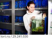 Купить «Girl looking at young fishes in aquarium», фото № 29241030, снято 17 февраля 2017 г. (c) Яков Филимонов / Фотобанк Лори