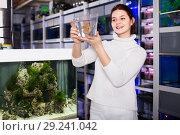 Купить «Girl holding plastic container with big colorful fish breed Discus in aquarium shop», фото № 29241042, снято 17 февраля 2017 г. (c) Яков Филимонов / Фотобанк Лори