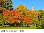 Купить «Bright multicolor autumn in Kremlin garden. Moscow, Russia», фото № 29241450, снято 15 октября 2018 г. (c) Валерия Попова / Фотобанк Лори