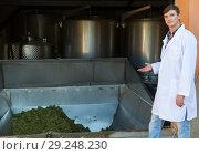Купить «Man showing process of winemaking», фото № 29248230, снято 13 сентября 2018 г. (c) Яков Филимонов / Фотобанк Лори