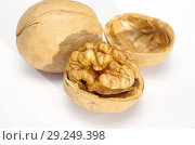 Купить «Грецкие орехи на белом фоне крупным планом», фото № 29249398, снято 17 октября 2018 г. (c) Елена Коромыслова / Фотобанк Лори