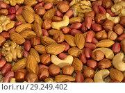 Купить «Фон из смеси орехов», фото № 29249402, снято 17 октября 2018 г. (c) Елена Коромыслова / Фотобанк Лори