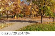 Купить «Moscow, Russia - October 17. 2018. Autumn park on clear day in Zelenograd», видеоролик № 29264194, снято 25 мая 2019 г. (c) Володина Ольга / Фотобанк Лори