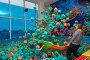 Купить «Children play with the animator in the entertainment center. Children play in the pool with soft cubes. Cheboksary, Russia, 10/20/2018», фото № 29272822, снято 20 октября 2018 г. (c) Александр Якимов / Фотобанк Лори