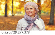 Купить «happy senior woman walking along autumn park», видеоролик № 29277378, снято 22 октября 2018 г. (c) Syda Productions / Фотобанк Лори