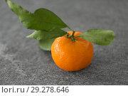 Купить «close up of mandarin on table», фото № 29278646, снято 4 апреля 2018 г. (c) Syda Productions / Фотобанк Лори