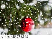 Купить «red christmas ball on fir tree branch with snow», фото № 29278842, снято 11 ноября 2016 г. (c) Syda Productions / Фотобанк Лори