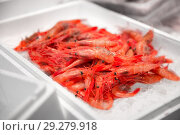 Купить «fresh shrimps or seafood on ice at street market», фото № 29279918, снято 10 февраля 2018 г. (c) Syda Productions / Фотобанк Лори