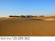 Sahara Desert scenery. Egypt (2008 год). Стоковое фото, фотограф Знаменский Олег / Фотобанк Лори